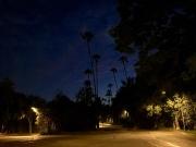 BEVERLY HILLS - CALIFORNIA