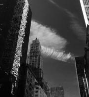 PARK AVENUE - NEW YORK