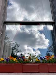 FLOWERBOX - NEW YORK